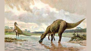 恐竜の想像図