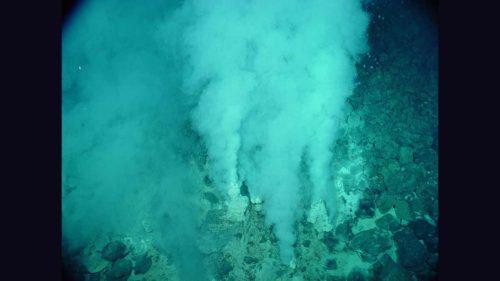熱水噴出孔の写真